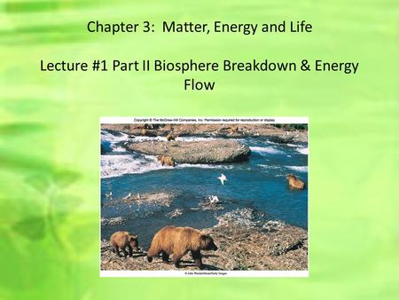Chapter 3: Matter, Energy and Life Lecture #1 Part II Biosphere Breakdown & Energy Flow.