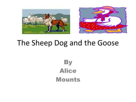 The Sheep Dog and the Goose By Alice Mounts One spring morning near a pond on a farm, an old dog lay snoozing in his kennel. He was awoken by loud honking.