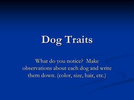 Dog Traits What do you notice? Make observations about each dog and write them down. (color, size, hair, etc.)