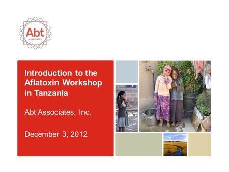Introduction to the Aflatoxin Workshop in Tanzania Abt Associates, Inc. December 3, 2012.