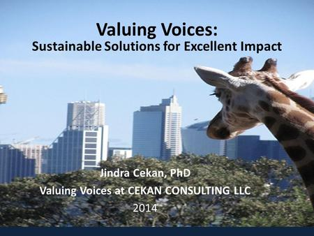 Valuing Voices: Sustainable Solutions for Excellent Impact Jindra Cekan, PhD Valuing Voices at CEKAN CONSULTING LLC 2014.