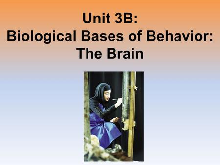 Unit 3B: Biological Bases of Behavior: The Brain.