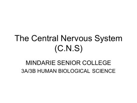 The Central Nervous System (C.N.S) MINDARIE SENIOR COLLEGE 3A/3B HUMAN BIOLOGICAL SCIENCE.