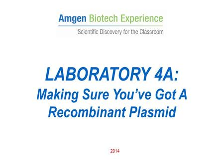 LABORATORY 4A: Making Sure You've Got A Recombinant Plasmid 2014.