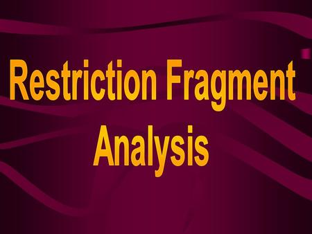 What is restriction fragment analysis? Restriction fragment analysis is a process used to compare the DNA of two or more different organisms.