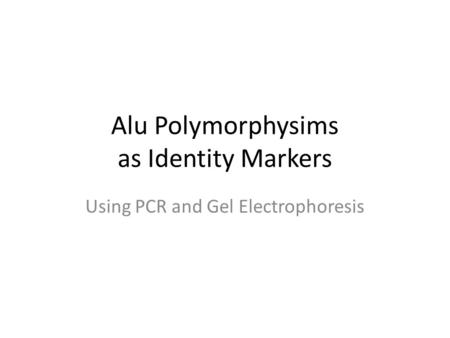 Alu Polymorphysims as Identity Markers Using PCR and Gel Electrophoresis.