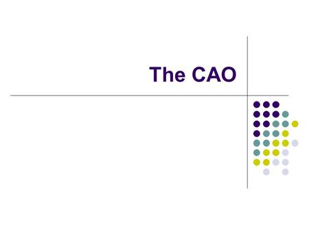 The CAO. The Choosing a Course Course Choice Think about: Skills Interest Career l Informed decisions ensurerightresults l Informed decisions ensure right.