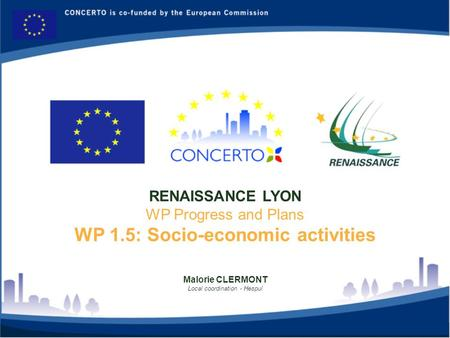 Malorie CLERMONT Local coordination - Hespul RENAISSANCE LYON WP Progress and Plans WP 1.5: Socio-economic activities.