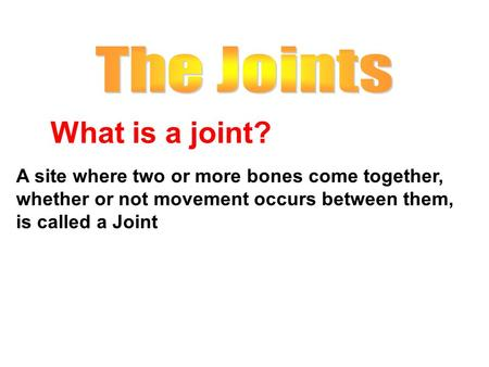 What is a joint? The Joints