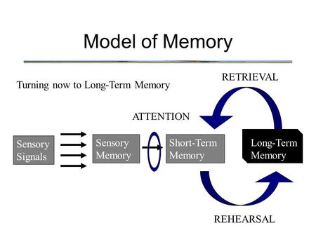 Model of Memory Turning now to Long-Term Memory Sensory Signals Sensory Memory Short-Term Memory Long-Term Memory ATTENTION REHEARSAL RETRIEVAL.