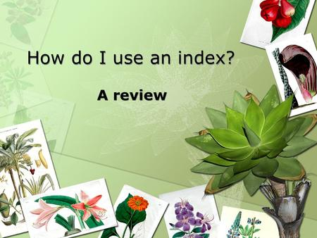 How do I use an index? A review. Where is the index located? In most reference books the index is located at the end of the book. In most non-fiction/