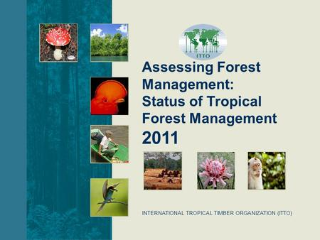 INTERNATIONAL TROPICAL TIMBER ORGANIZATION (ITTO) Assessing Forest Management: Status of Tropical Forest Management 2011.