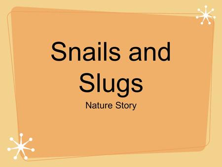 Snails and Slugs Nature Story.