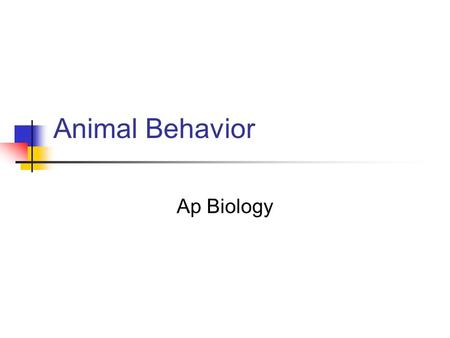 Animal Behavior Ap Biology. Genetic Basis of Behavior ___________ are behaviors that are innate- or genetically inherited. Behavior influenced by genes.