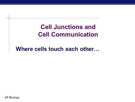 AP Biology Cell Junctions and Cell Communication Where cells touch each other…