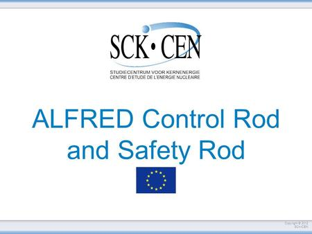 ALFRED Control Rod and Safety Rod