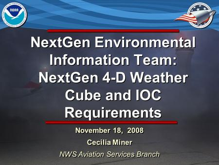 November 18, 2008 Cecilia Miner NWS Aviation Services Branch