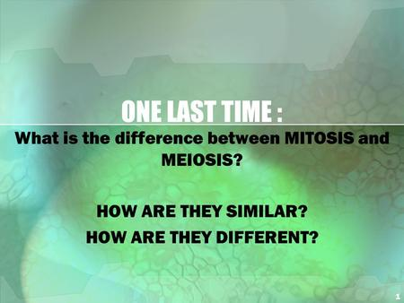 1 ONE LAST TIME : What is the difference between MITOSIS and MEIOSIS? HOW ARE THEY SIMILAR? HOW ARE THEY DIFFERENT?