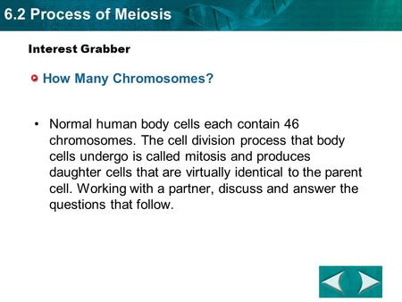 6.2 Process of Meiosis How Many Chromosomes? Normal human body cells each contain 46 chromosomes. The cell division process that body cells undergo is.