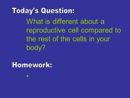 What is different about a reproductive cell compared to the rest of the cells in your body?