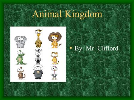 Animal Kingdom By: Mr. Clifford. Phylum- Chordate Chordate is a group of animals that include vertebrates and a few invertebrates All animals in the chordate.