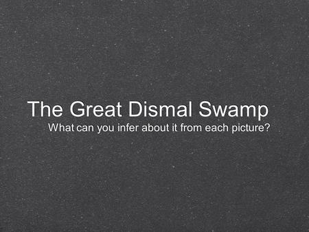 The Great Dismal Swamp What can you infer about it from each picture?