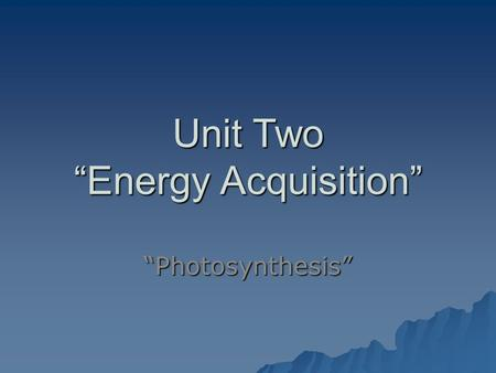 "Unit Two ""Energy Acquisition"" ""Photosynthesis"". The Sun and Plants  What makes life possible on Earth is the presence of a medium sized star, the Sun."