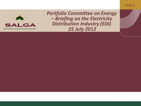 Slide 1 Portfolio Committee on Energy – Briefing on the Electricity Distribution Industry (EDI) 25 July <strong>2012</strong>.
