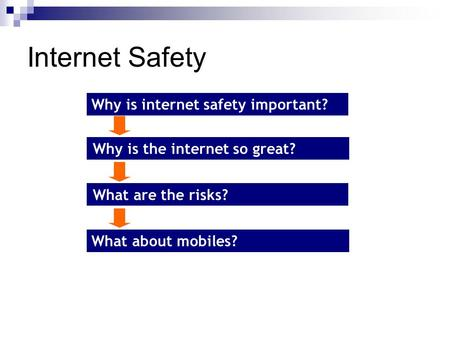Internet Safety Why is internet safety important? What about mobiles? What are the risks? Why is the internet so great?