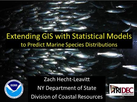 Extending GIS with Statistical Models to Predict Marine Species Distributions Zach Hecht-Leavitt NY Department of State Division of Coastal Resources.