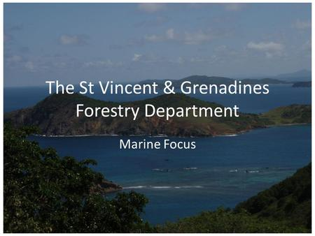 The St Vincent & Grenadines Forestry Department Marine Focus.