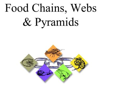 Food Chains, Webs & Pyramids. _______factors in an ecosystem are factors that are living. ________factors in an ecosystem are factors that are not living.