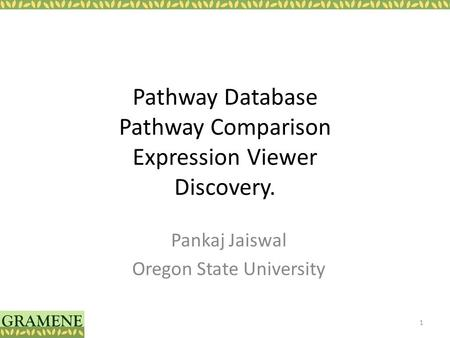 Pathway Database Pathway Comparison Expression Viewer Discovery. Pankaj Jaiswal Oregon State University 1.