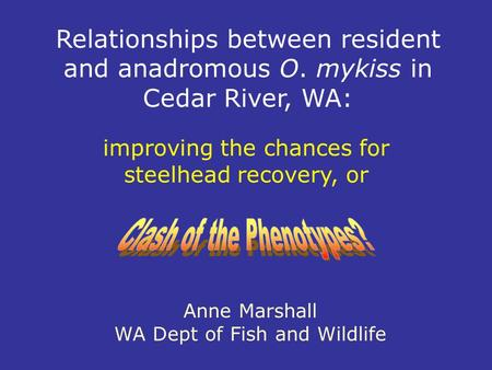 Relationships between resident and anadromous O. mykiss in Cedar River, WA: Anne Marshall WA Dept of Fish and Wildlife improving the chances for steelhead.