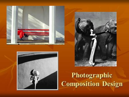 Photographic Composition Design. If the original viewpoint concept is not right all technical procedures have small meaning-Ansel Adams.