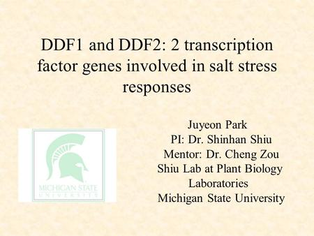 DDF1 and DDF2: 2 transcription factor genes involved in salt stress responses Juyeon Park PI: Dr. Shinhan Shiu Mentor: Dr. Cheng Zou Shiu Lab at Plant.
