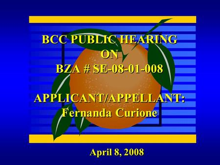 April 8, 2008 BCC PUBLIC HEARING ON BZA # SE-08-01-008 APPLICANT/APPELLANT: Fernanda Curione.