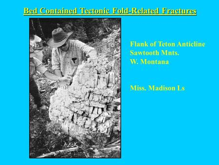 Bed Contained Tectonic Fold-Related Fractures Flank of Teton Anticline Sawtooth Mnts. W. Montana Miss. Madison Ls.