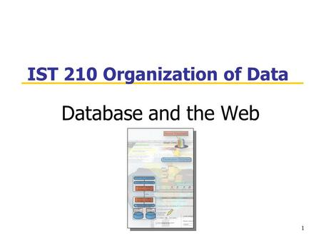 1 IST 210 Organization of Data Database and the Web.