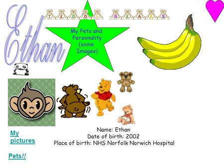 Name: Ethan Date of birth: 2002 Place of birth: NHS Norfolk Norwich Hospital Pets!! My pictures My Pets and Personality (some Images)