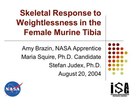 Skeletal Response to Weightlessness in the Female Murine Tibia Amy Brazin, NASA Apprentice Maria Squire, Ph.D. Candidate Stefan Judex, Ph.D. August 20,