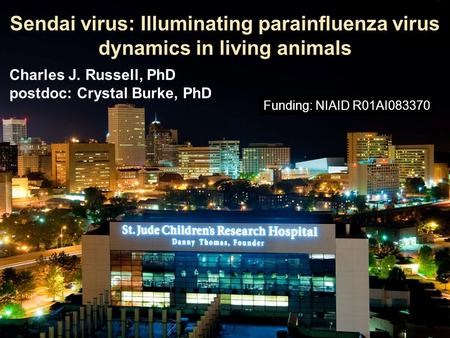 Sendai virus: Illuminating parainfluenza virus dynamics in living animals Charles J. Russell, PhD postdoc: Crystal Burke, PhD Funding: NIAID R01AI083370.