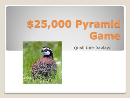 $25,000 Pyramid Game Quail Unit Review Directions: To Play Divide up in partners. Each pair will choose who will give clues and who will receive the.