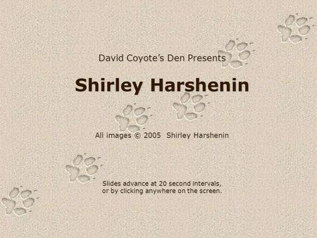 David Coyote's Den Presents Shirley Harshenin All images © 2005 Shirley Harshenin Slides advance at 20 second intervals, or by clicking anywhere on the.
