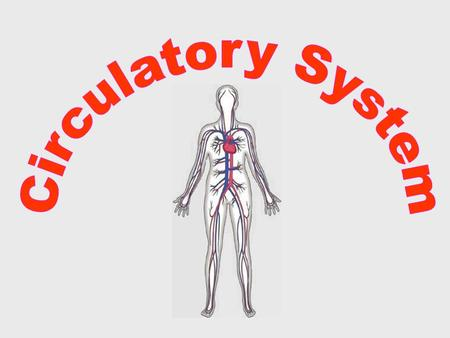  The circulatory system carries blood and dissolved substances to and from different places in the body.  The Heart has the job of pumping these things.