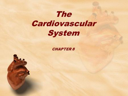The Cardiovascular System CHAPTER 8. Where is the heart located? Centrally in the chest –Surrounded by lungs, protected by ribs –Between 3 rd -7 th ribs.