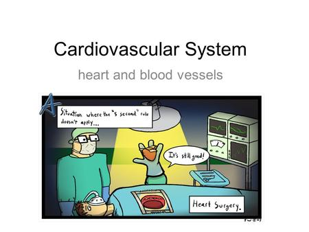 Cardiovascular System heart and blood vessels. Tainted Love…?