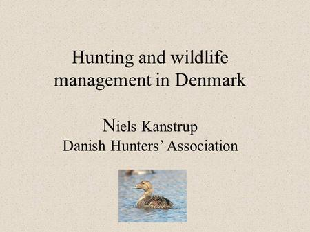 Hunting and wildlife management in Denmark N iels Kanstrup Danish Hunters' Association.