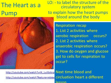 The Heart as a Pump LO: - to label the structure of the circulatory system to explain how the heart pumps blood around the body