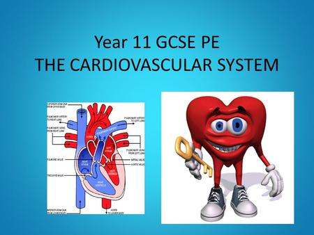 Year 11 GCSE PE THE CARDIOVASCULAR SYSTEM. OBJECTIVES TO KNOW THE JOURNEY OF BLOOD THROUGH THE CARDIOVASCULAR SYSTEM TO UNDERSTAND HOW THE HEART WORKS.